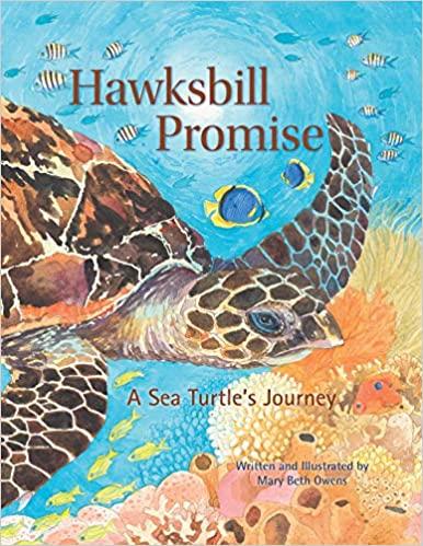 hawksbill-promise